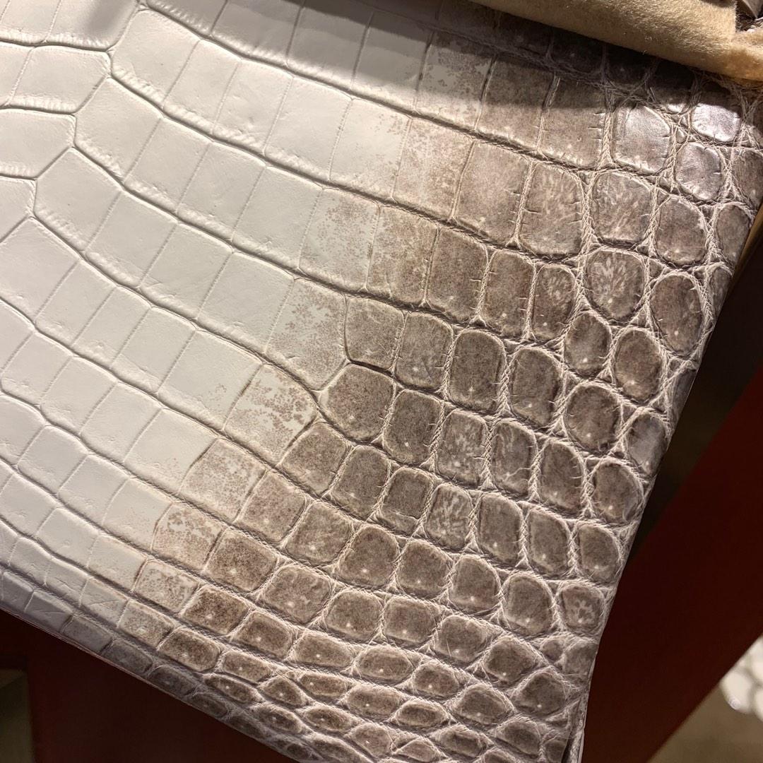 爱马仕铂金包 Birkin 30cm 法国顶级Hcp雾面两点尼罗鳄Matte Niloticus Himalaya 喜马拉雅 南非真钻 银扣